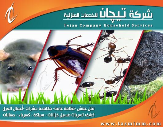 افضل شركة مكافحة حشرات بجدة ومكه - مكافحة بق الفراش والفئران والصراصير